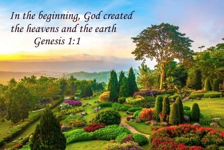 Genesis 1 1.jpg